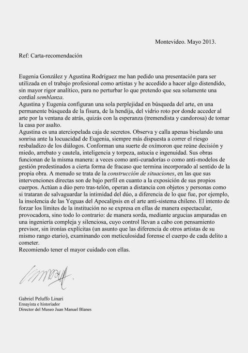 Carta recomendación Gabriel Peluffo